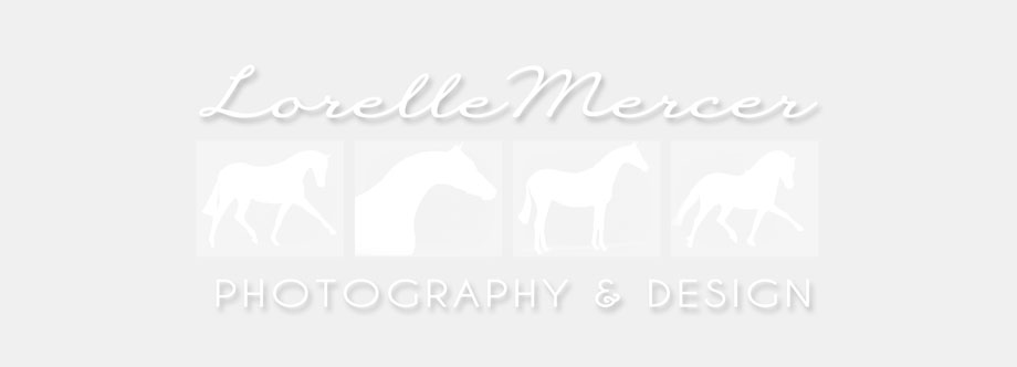 Lorelle Mercer Photography & Design